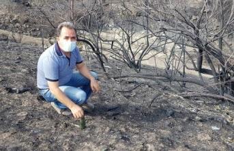 Yangınların Ortaya Çıkarttığı insanlığın çirkin yüzü…