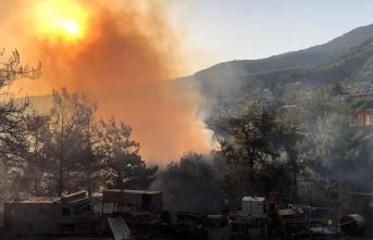 Yangında Tarımsal Zarar Oluşanlara 3 Milyon Liralık Yardım!