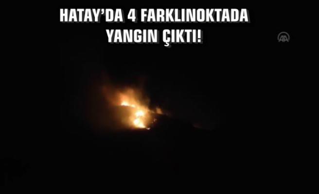 Hatay'da 4 Farklı Noktada Yangın Çıktı!