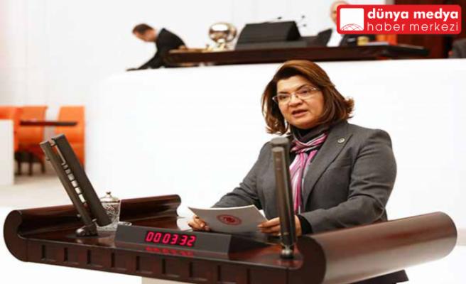"""Milletvekili Suzan Şahin: """"İstanbul Sözleşmesini Yaşatacağız"""""""