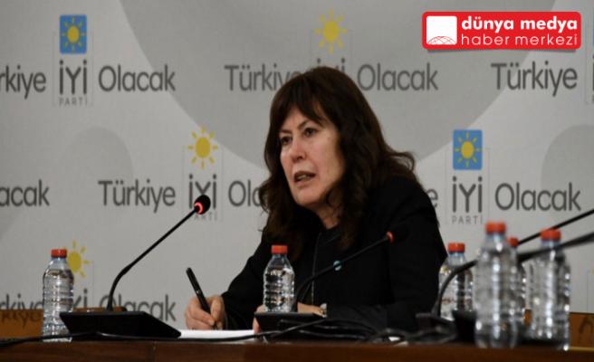 İYİ Partili Şenol Sunat   TBMM'de Hatay'ın Sorunlarını   Dile Getirdi
