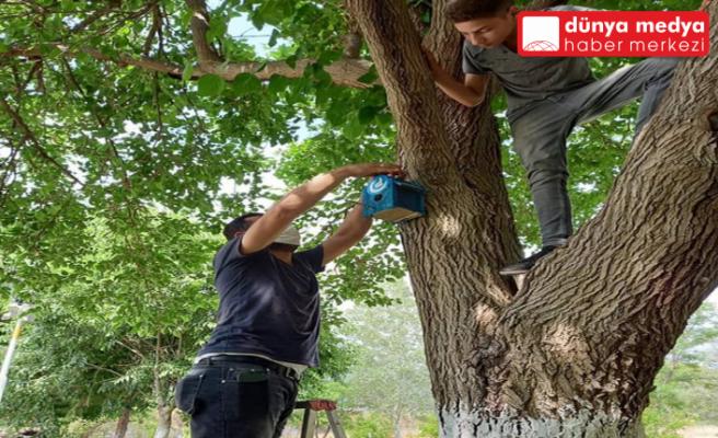 Erzin Ülkü Ocakları   kuşlar için ağaçlara yuva astı