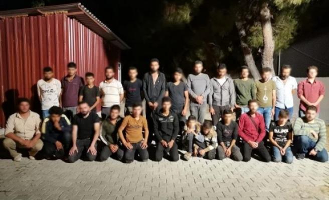 Hatay'da göçmenlerle organizatörlere darbe!