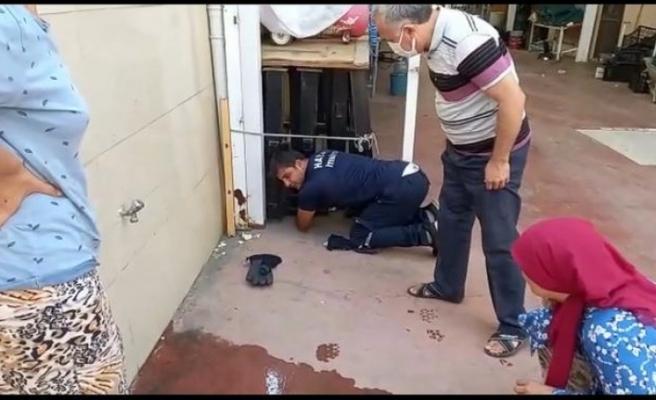 Kur'an kursu binasında   kedi kurtarma operasyonu