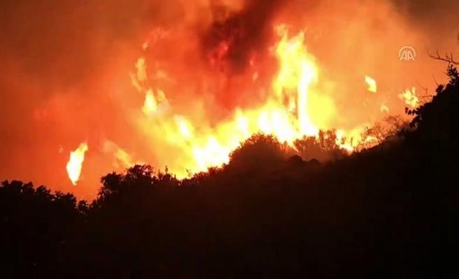 Antakya'da otluk alanda çıkan   yangın paniğe neden oldu!
