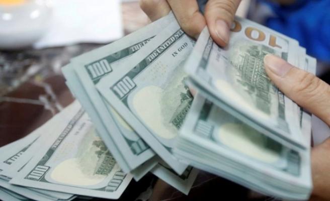 Hazine ve Maliye Bakanlığı'ndan   döviz alım satımına ilişkin açıklama