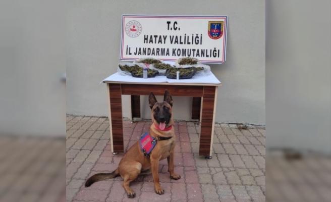 Kırıkhan'da uyuşturucu operasyonunda   yakalanan şüpheli tutuklandı