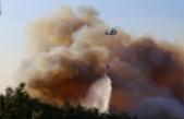 Hatay'daki orman yangını 3 ilçede devam ediyor! Müdahale sürüyor