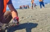 Samandağ'da petrol temizliği   çalışmaları 18 gündür sürüyor