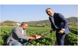 Milletvekili Lütfi Kaşıkçı'dan Çiftçiler Gününe özel