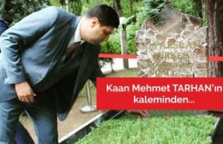 27 Mayıs, Başbuğ Türkeş ve MHP