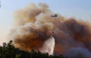 Hatay'daki orman yangını 3 ilçede devam ediyor!...