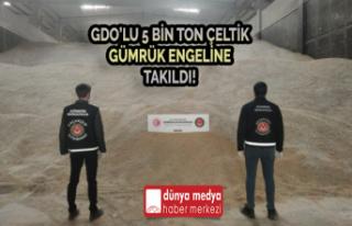 GDO'lu 5bin Ton Çeltik Gümrük Engeline Takıldı!