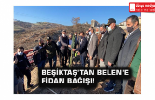 Beşiktaş'tan Belen'e Fidan Bağışı!