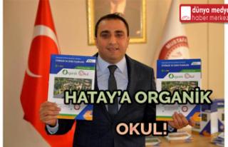 Hatay'a Organik Okul!
