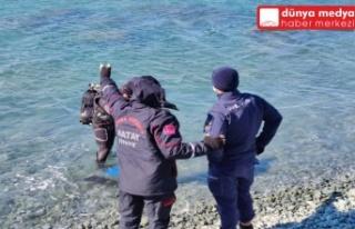 Samandağ'da Denizde Kaybolan Genç 2 Aydır...
