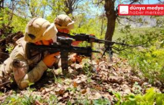 Hakkari ve Şırnak'ta Eren Operasyonları Başlatıldı!