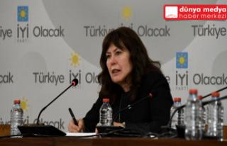 İYİ Partili Şenol Sunat TBMM'de Hatay'ın Sorunlarını...