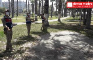 Hatay'da Jandarma Sokak Hayvanlarını Unutmadı