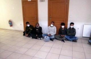 Hassa'da 22 kaçak   göçmen yakalandı