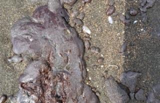 Hatay'da sahile  petrol atığı vurdu