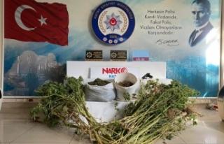 Antakya'da Uyuşturucu Operasyonu!