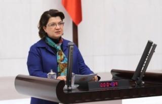 CHP'li Şahin: 'Adana-Hatay Otobanı Uzatılmalı'