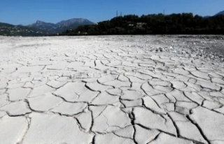 İklim krizi: Dünya Meteoroloji Örgütü'ne...