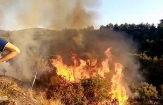 Pirinçlik'te yerleşim yerlerini tehdit eden yangın!