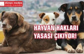 Hayvan Hakları Yasası Çıkıyor!