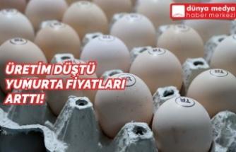 Üretim Düştü, Yumurta Fiyatları Arttı!