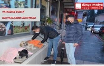 Vatandaş Sokak Hayvanlarını Unutmadı!