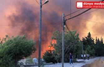 Orman Yangınlarının Faillerinin Yakalanması Hataylıların Yüzünü Güldürdü!