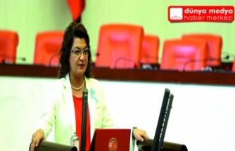 CHP'den Aile Hekimlerinin Özlük Haklarını  Kısıtlayan Yönetmeliğe İtiraz