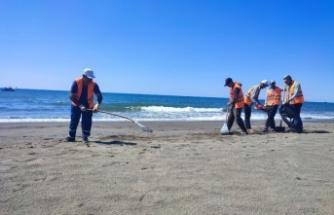Hatay sahilinde petrol atıklarını   temizleme çalışmalarında 15. gün
