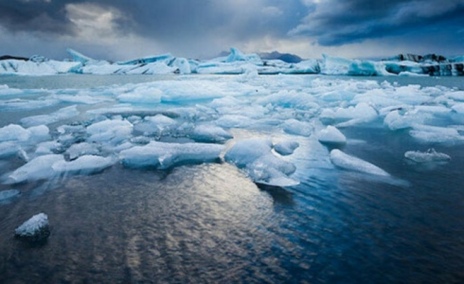 Bilim İnsanları Açıkladı! Kutuplara Doğru Göç Başladı
