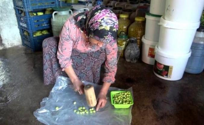 Okuyan çocuğu ve engelli eşi için zeytincilik işine girdi, şimdi yılda 6 ton zeytin satıyor