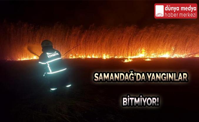 Samandağ'da Yangınlar Bitmiyor!