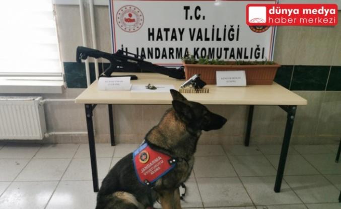 Samandağ'da Uyuşturucu Operasyonu!