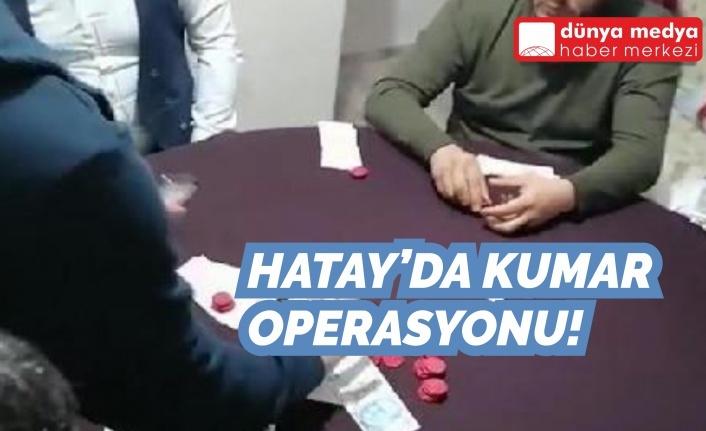 Hatay'da Kumar Operasyonu!